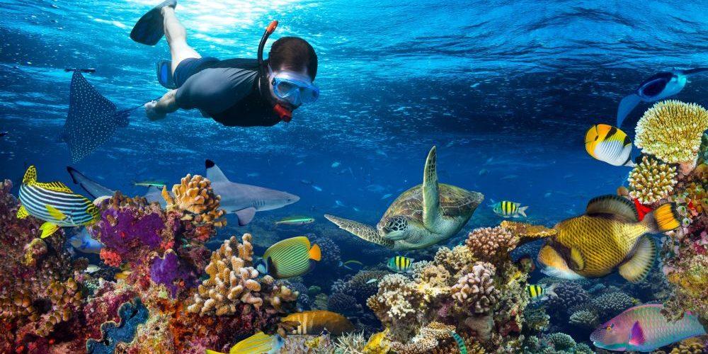 Dykning klassas nu som friskvård