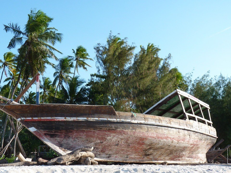 Palm tree boat zanzibar zanzibar accommodations deals